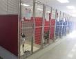 Dog kennels1001