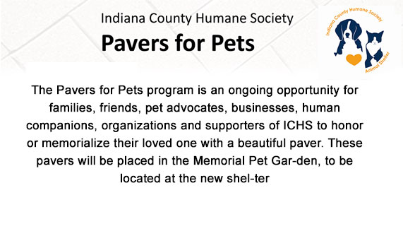 Pavers for Pets