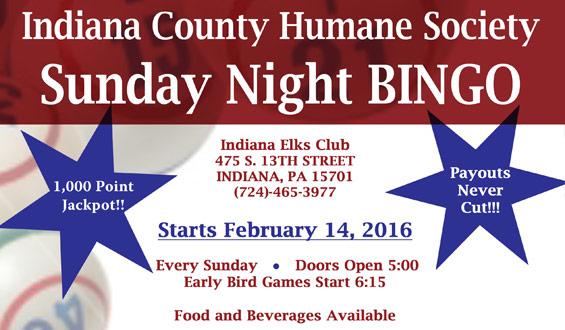 Sunday Night Bingo