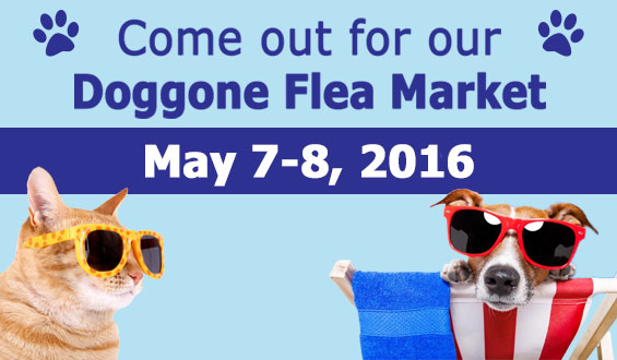 Doggone Flea Market